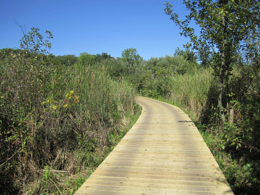 completed boardwalk over bog; supported by helical piers